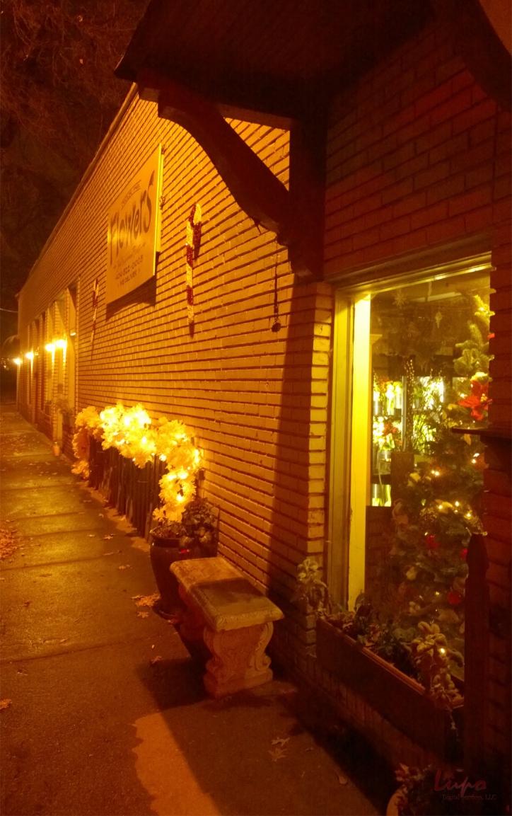 Chandler Park, Atlanta, GA, 20 December 2014