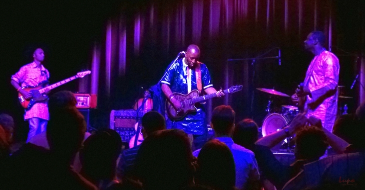 Vieux Farka Toure, Terminal West, Atlanta, GA 22 April 2015, #5